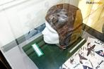 Capacete de avia��o norte-americano utilizado na Segunda Guerra Mundial, exemplares expostos no Museu do Expedicion�rio em Curitiba - Paran�. <br><br/> Palavras-chave: rela��es de poder, For�as Armadas, Ex�rcito Brasileiro, For�a Expedicion�ria Brasileira, Armas, Museu do Expedicion�rio, Curitiba, Paran�.